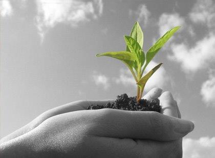 Auditoria e Perícia Ambiental - Fundamentos Essenciais